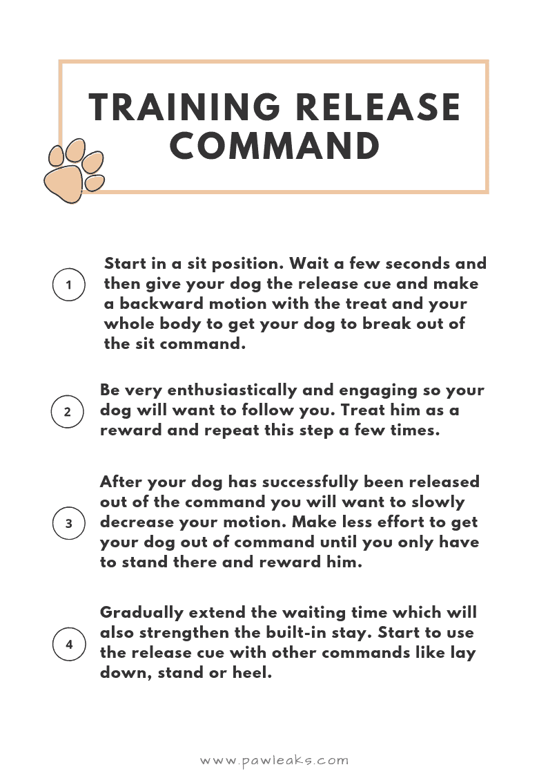 Release command cue card